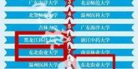 全国高校外卖订单前30强 哈尔滨六所高校上榜 - 新浪黑龙江