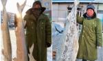 东北最大的冻鱼市场 - 新浪黑龙江