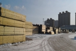 佳木斯市林业局开展木材产地检疫工作 - 林业厅