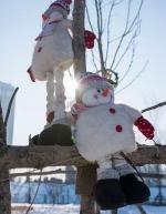 群力雪人谷免费看雪人 那里有2018个白胖子等你去撩 - 新浪黑龙江