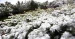 黑龙江这个地方下雪啦 今日有大风可达七八级 - 新浪黑龙江