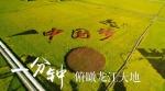 壮美龙江 - 新浪黑龙江