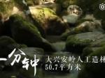 微视频:黑龙江一分钟 - 新浪黑龙江