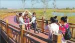 市民来到湿地休闲、游玩。 本报记者苏强摄 - 新浪黑龙江