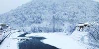 黑龙江多地昨降雪 雪乡凤凰山等景区雪景醉人被圈粉 - 新浪黑龙江