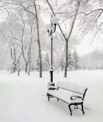 """""""忽如一夜春风来,千树万树梨花开。牡丹江大雪,已然成了雪的王国"""" - 新浪黑龙江"""