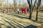 哈市香坊区劳动公园内一侧的草坪都被踩秃了 - 新浪黑龙江