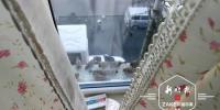 照顾小麻雀二十年 冰城九旬奶奶家窗台成了麻雀们的食堂 - 新浪黑龙江