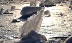 冰城摄影师用镜头留住冬天 抓拍冰融瞬间 - 新浪黑龙江