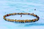 人群兴奋地围在北极点 - 新浪黑龙江