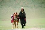 藏民 - 新浪黑龙江