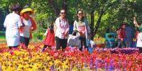 黑龙江文化旅游精彩纷呈 重点景区人数收入双增 - 新浪黑龙江